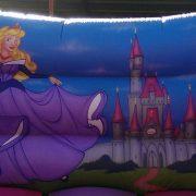 Princess 12X14
